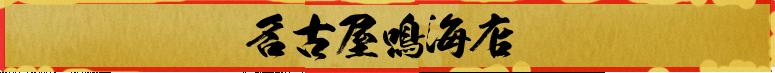 Nagoya Narumi